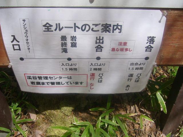 P1010267.jpg