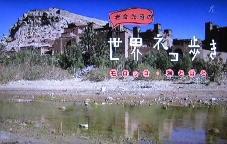 岩合光昭の世界ネコ歩き「モロッコ~海と山と」