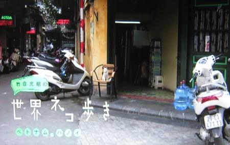 岩合光昭の世界ネコ歩き「ベトナム・ハノイ」