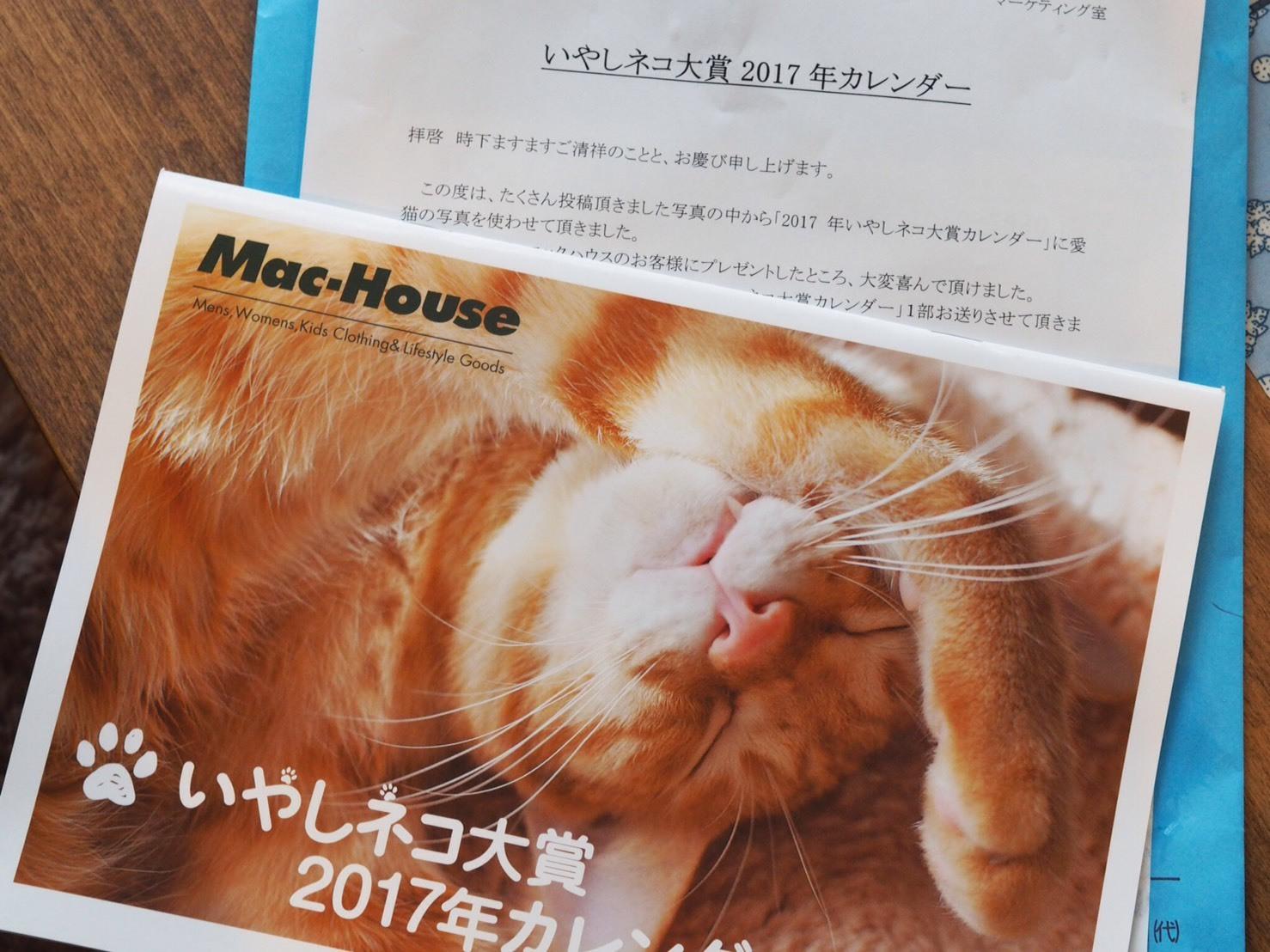 いやしネコ大賞2017