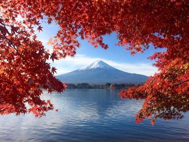 FUJI Autumn