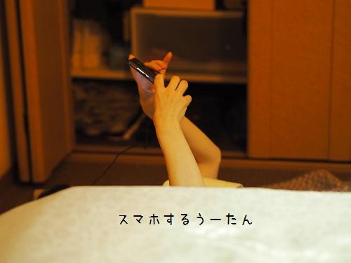 PA290007.jpg
