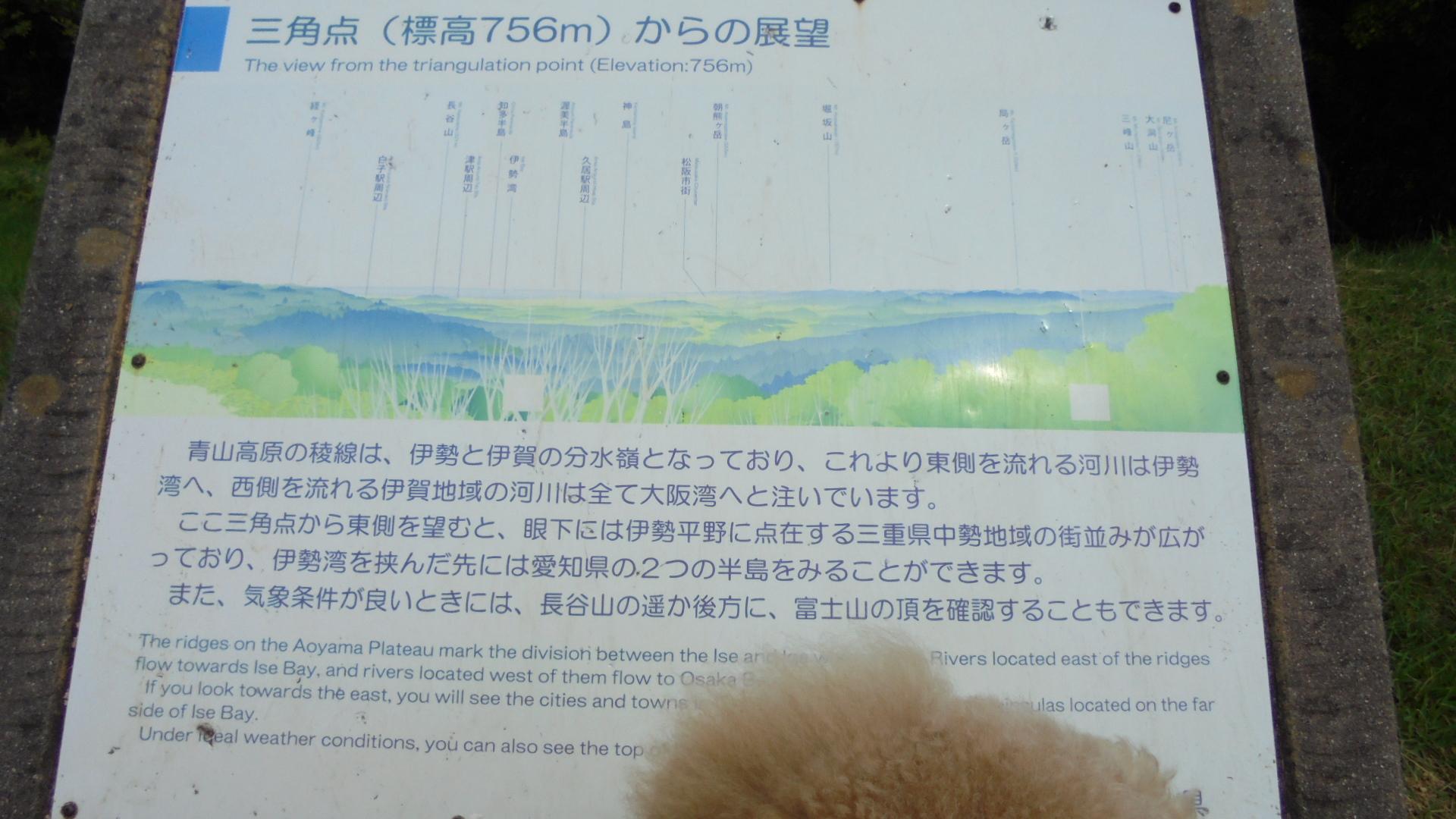 DSC04882.jpg