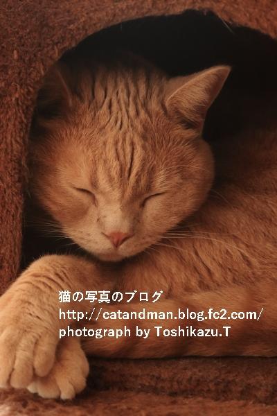 IMG_1583s.jpg