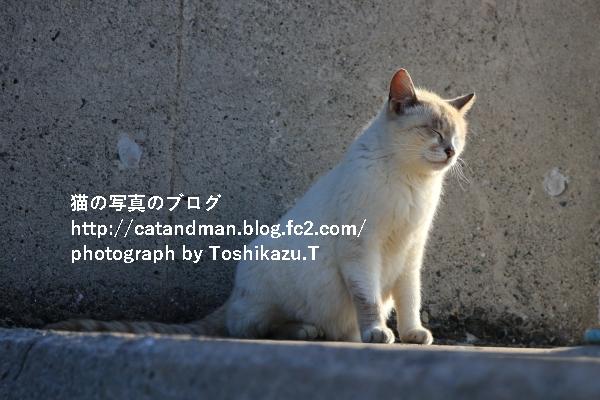 IMG_3973s.jpg
