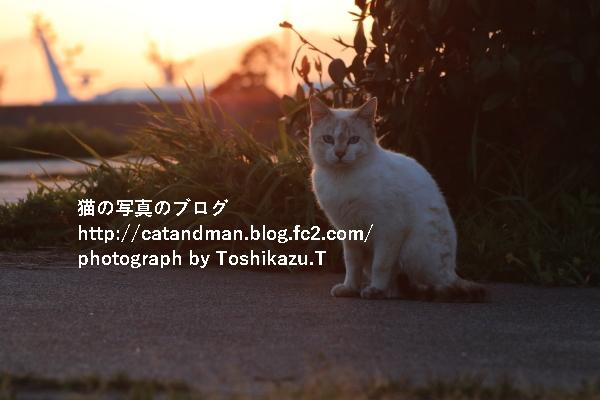IMG_4069s.jpg