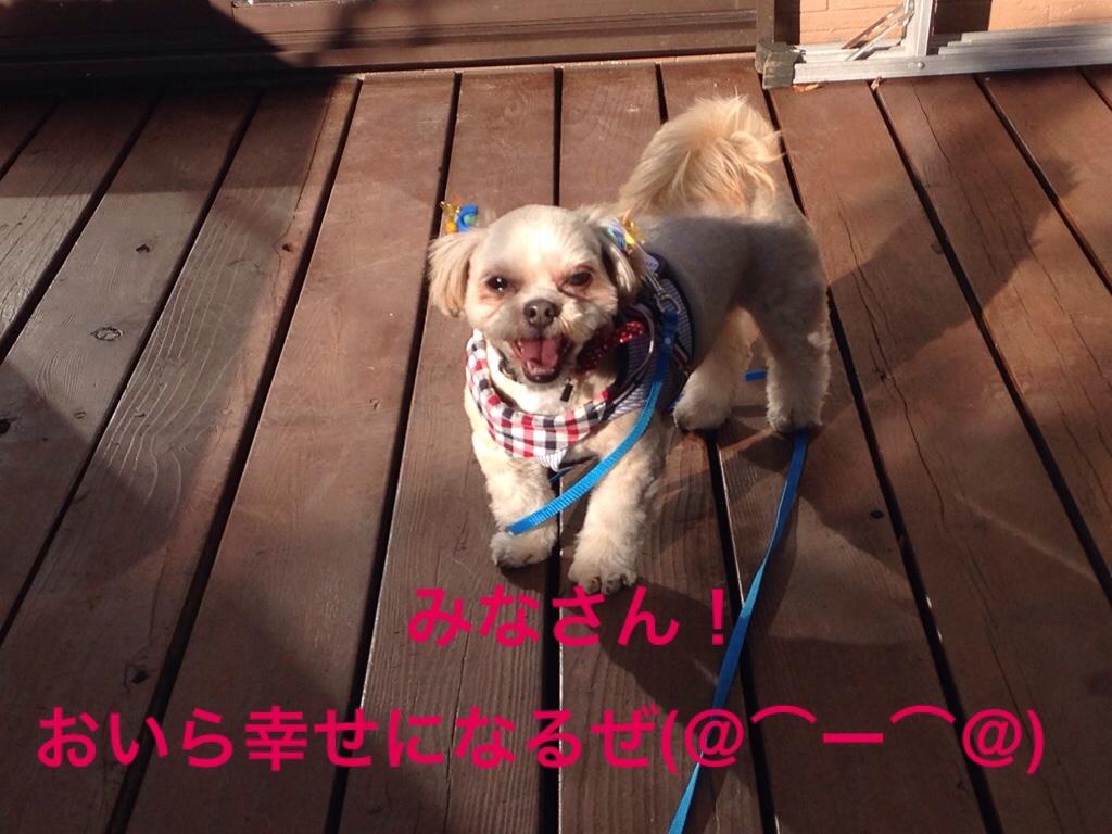 fc2blog_20161118211147d48.jpg