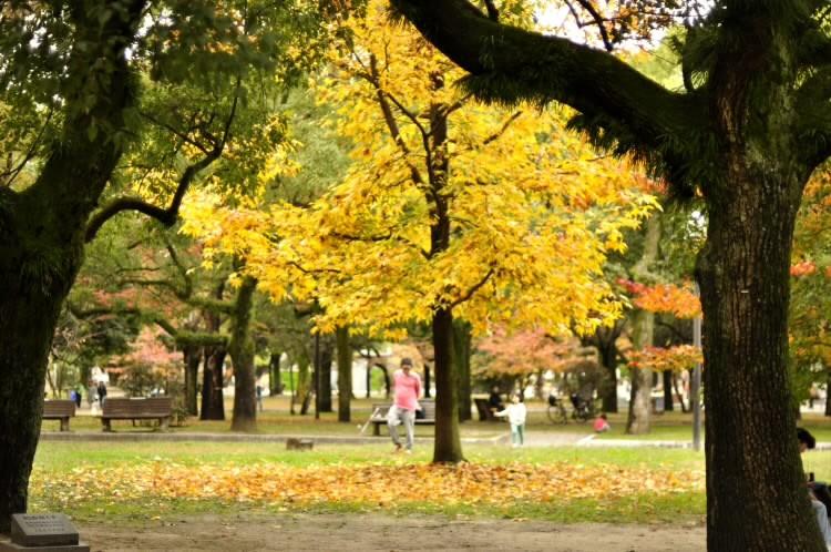 161120piecepark010.jpg