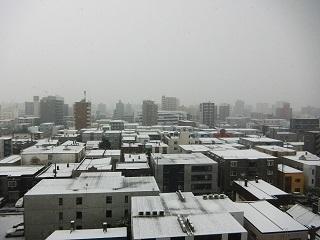 実質初雪の朝