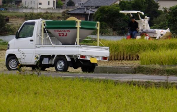 稲刈り04jpg