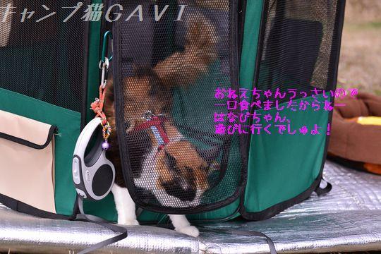 160410_3299.jpg