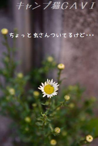 160412_3562.jpg