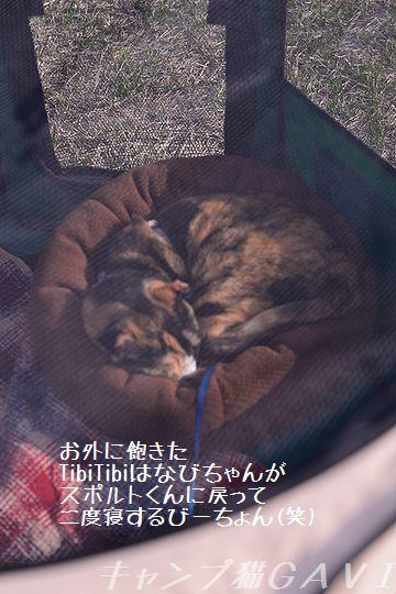 160416_3776.jpg