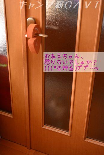 160419_3903.jpg