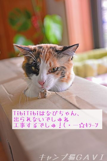 160427_4024.jpg
