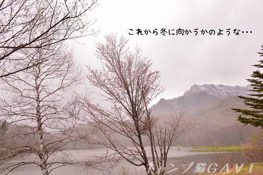 160429_4097.jpg