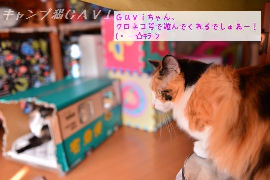 160901_9201.jpg