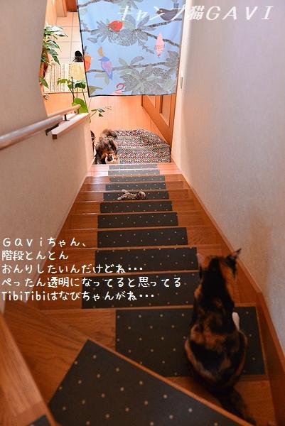 160902_9225.jpg