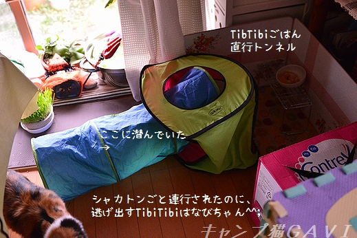 161008_0112.jpg