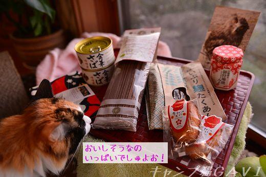 1612_3232.jpg
