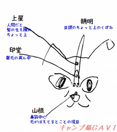 1612_目鼻
