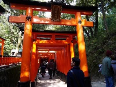 Kyoto201611-310.jpg