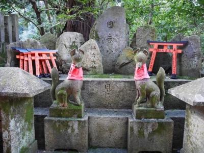 Kyoto201611-330.jpg