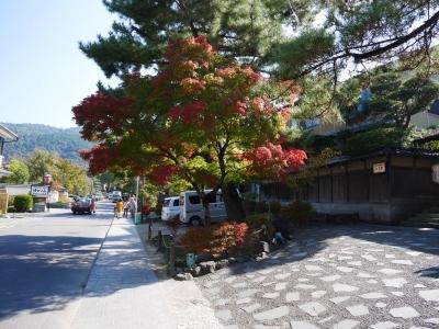Kyoto201611-415.jpg