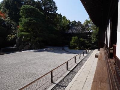 Kyoto201611-419.jpg