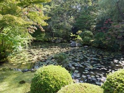 Kyoto201611-421.jpg
