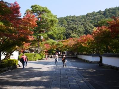 Kyoto201611-434.jpg