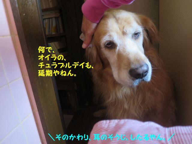 IMG_9140.jpg