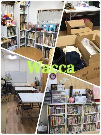 wacca10.jpg