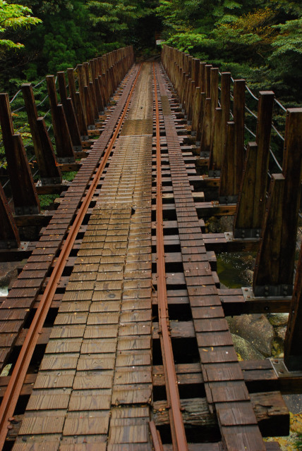 屋久島_荒川から縄文杉へ_橋