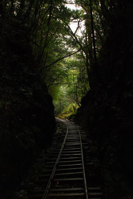 屋久島_荒川から縄文杉へ_切通と線路
