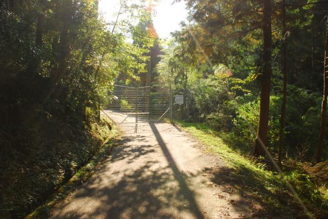 栗柄から林道で登山口へ_鹿除けゲート