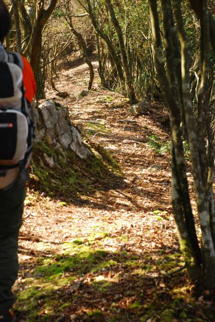 三岳登山道_黄葉の稜線