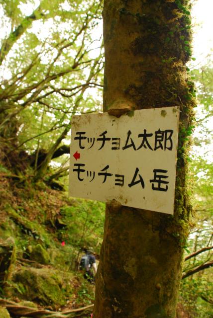 モッチョム太郎とモッチョム岳の標識
