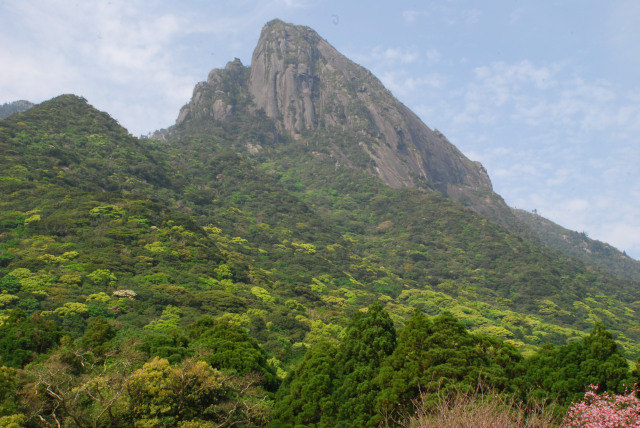 尾之間温泉から見上げたモッチョム岳_大迫力の岩の岩壁