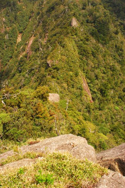 モッチョム岳_山頂から登山道を見下ろす