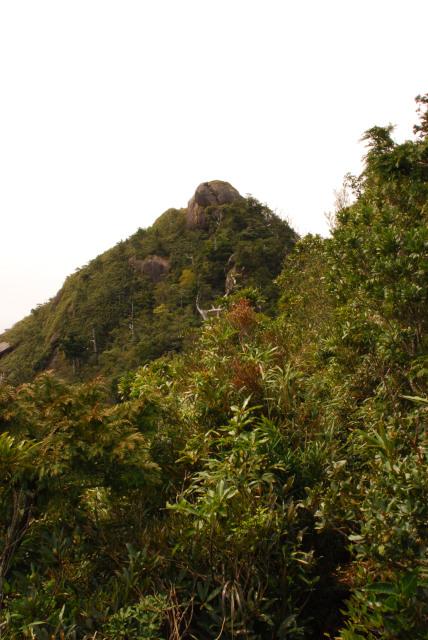 モッチョム岳_登山道から見えた山頂_岩の突起