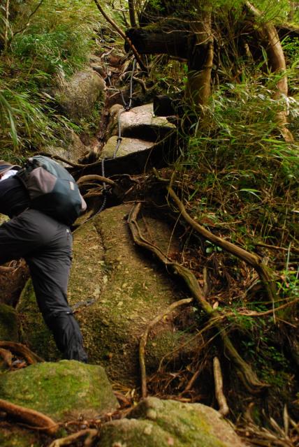 モッチョム岳_登山道_山頂へ最後の登り返し_黒いロープ