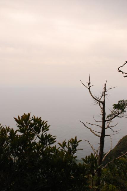 モッチョム岳_登山道_海の眺め