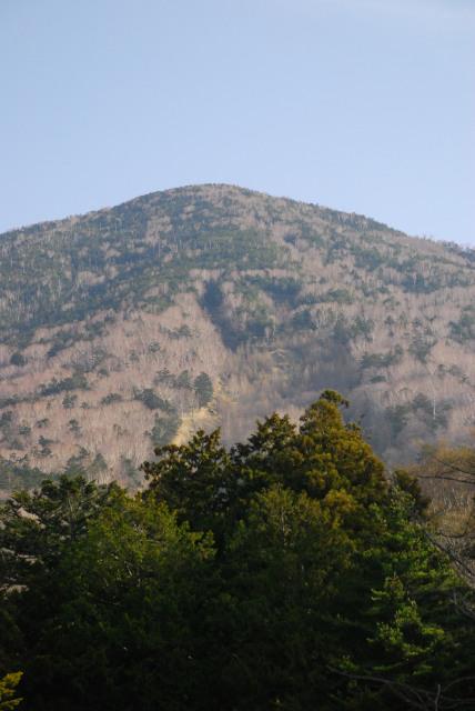 二荒山神社の裏に男体山の山頂が見える