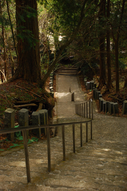 男体山から二荒山神社の裏に下山
