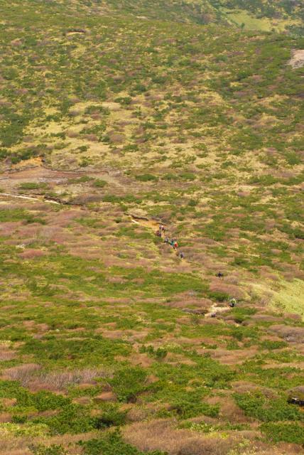 清水平を貫く木道と登山者の列が小さく見える