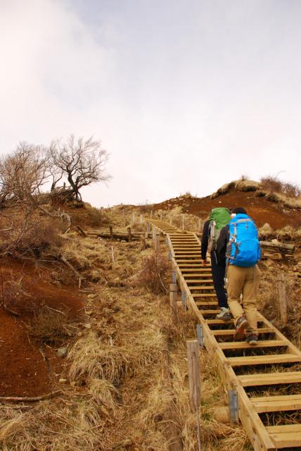 塔ノ岳_山頂直下_木道階段