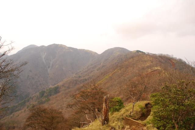 塔ノ岳から丹沢山と蛭ヶ岳の眺め