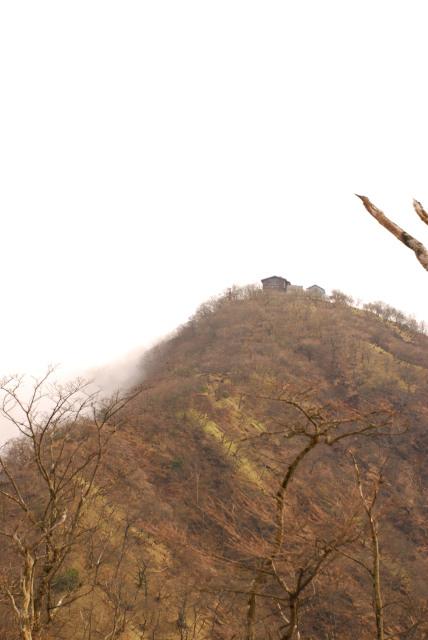 登山道から振り返って塔ノ岳山頂と尊仏山荘