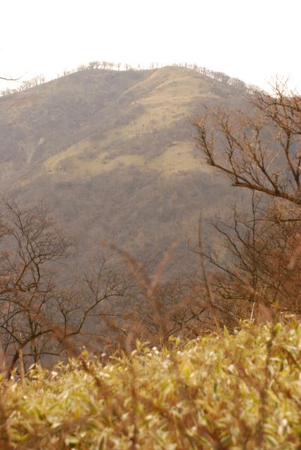 丹沢の最高峰_蛭ヶ岳